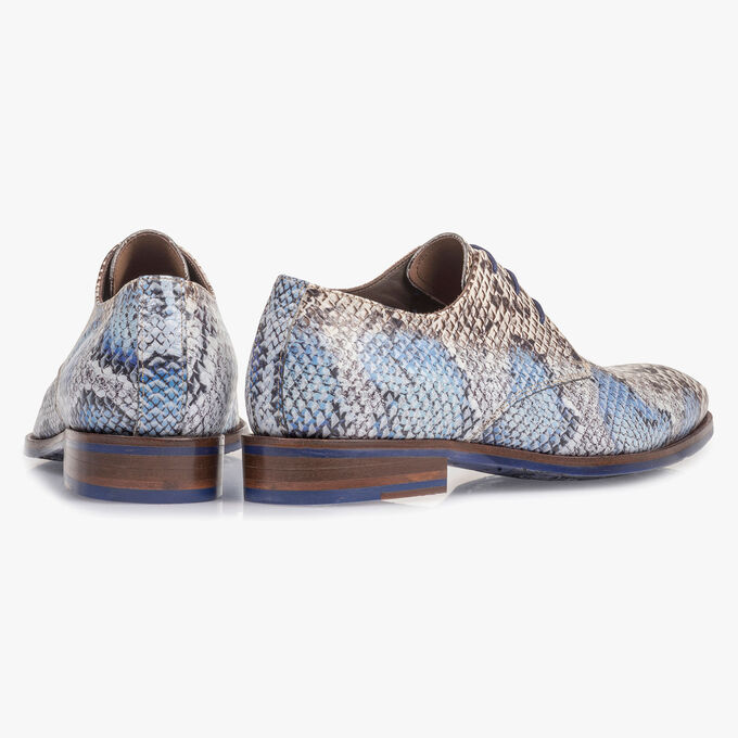 Premium lace shoe with a blue snake print