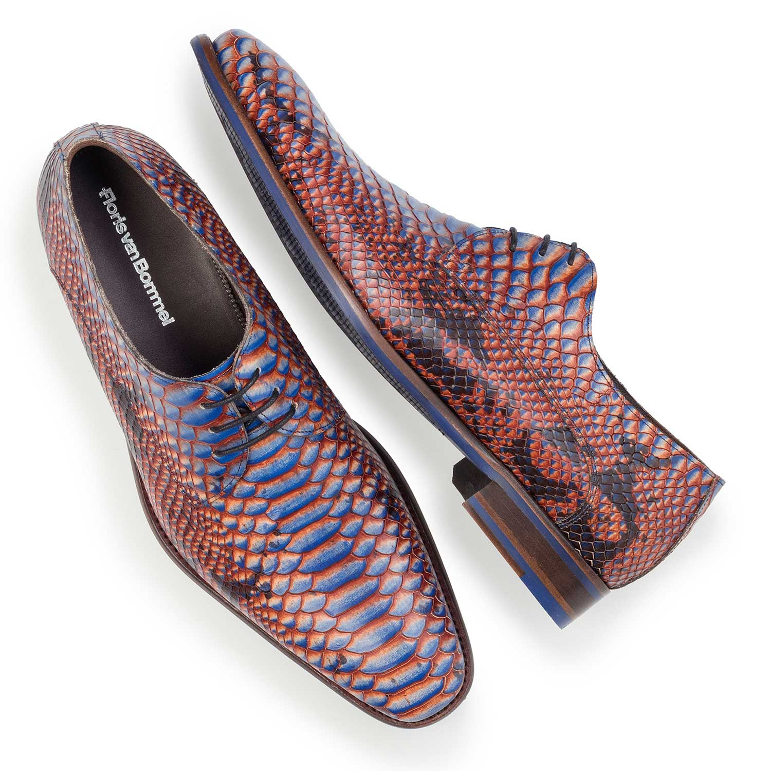 14204/00 - Blue leather lace shoe with snake print